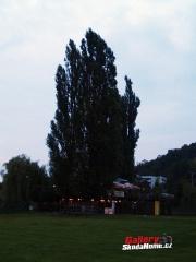 prazska-noblesa-2010-388.jpg