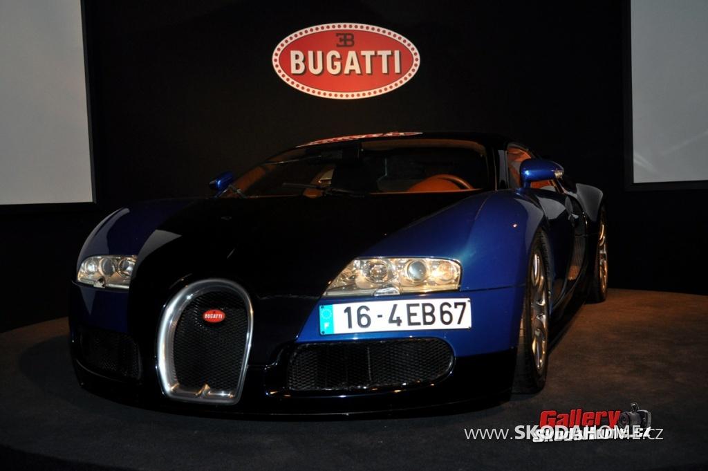 bugatti-ve-francouzskem-mulhause-146.jpg