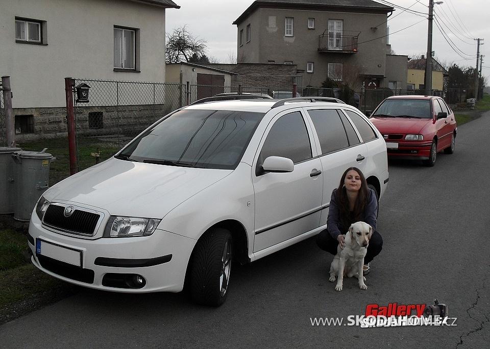 Přítelkyně, náš pes, a naše auta