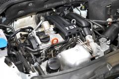 DSC 4503