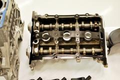 DSC 7862