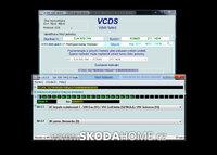 vcds-skoda-rapid-17-00.jpg