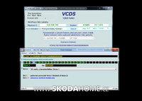 vcds-skoda-rapid-17-03.jpg