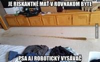 pes_a_roboticky_vysavac_v_byte.thumb.jpg.07d86c664900b2b1c941e662242e2a78.jpg