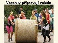 Veganky_pripravuji_roladu.jpg