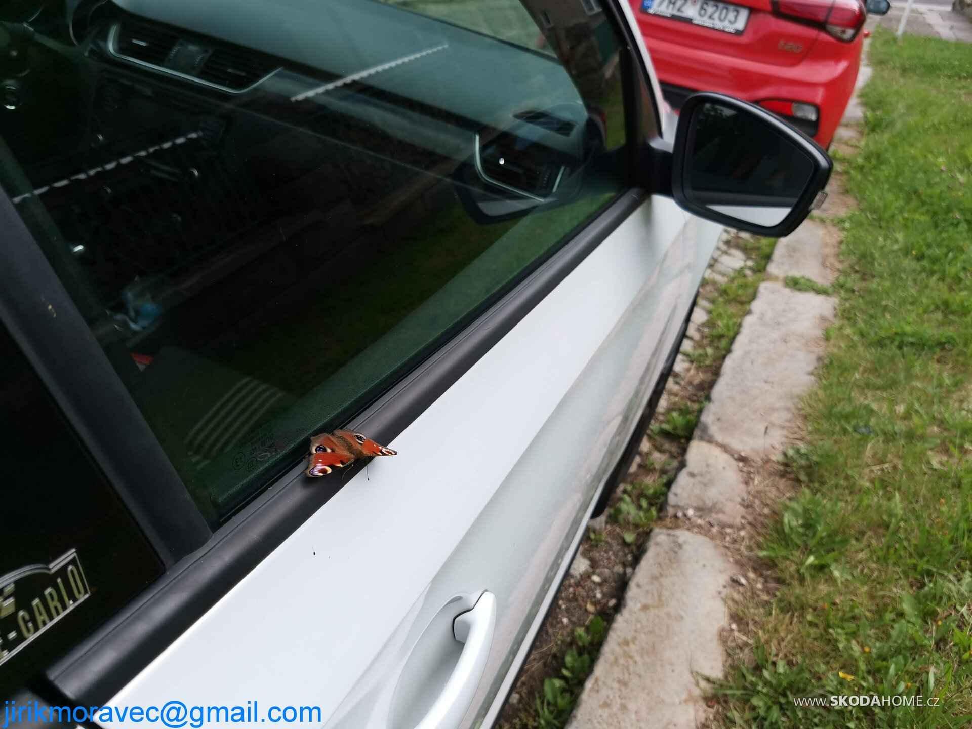 Motýl vs Monte Carlo :)